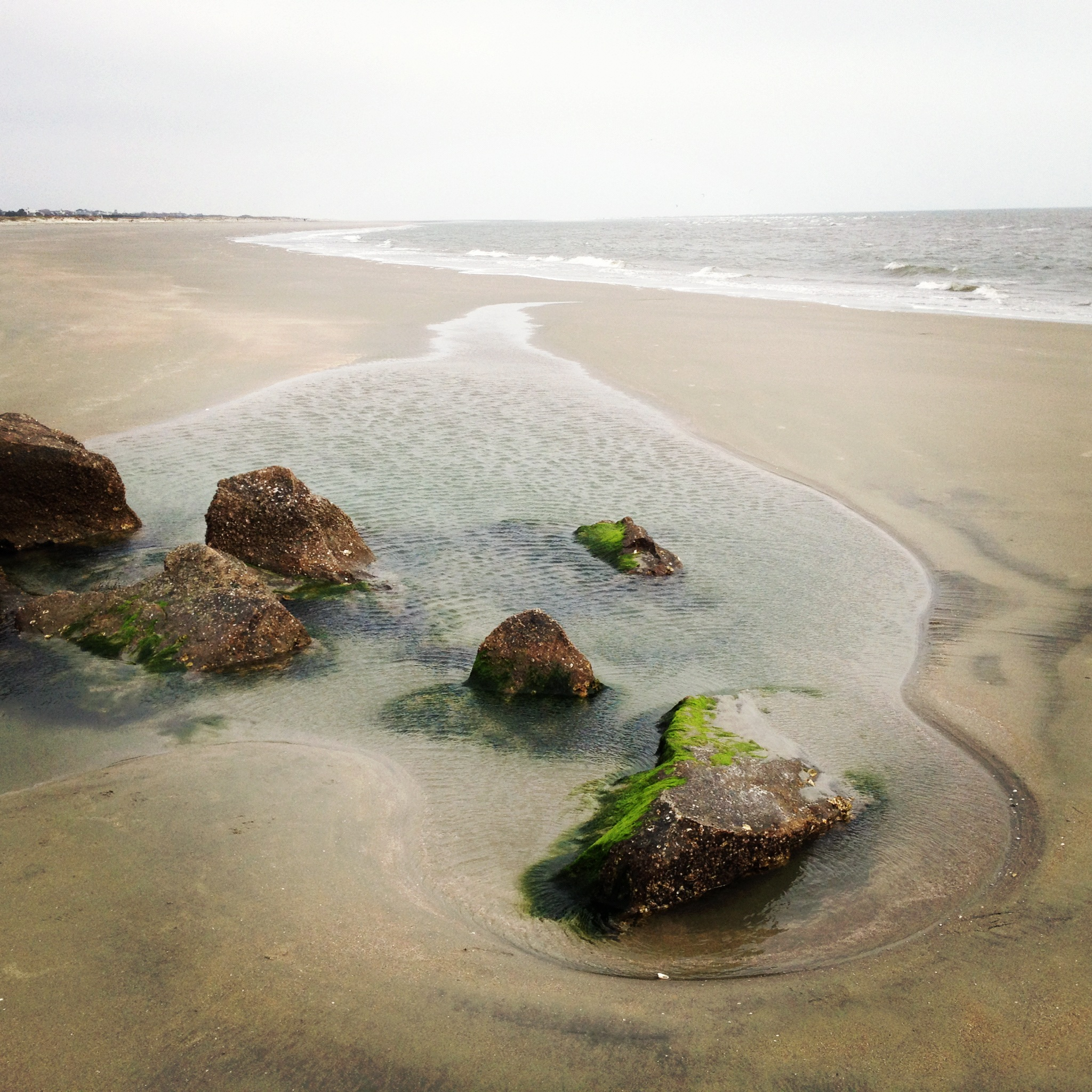Sullivan's Island, SC Beach
