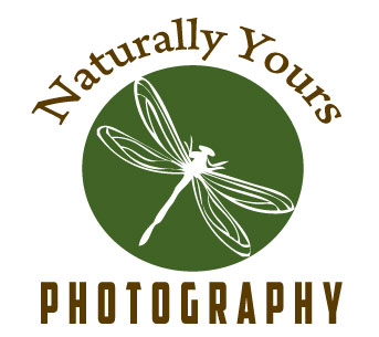 New Logo for Naturally Yours Photography